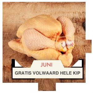 Ruit Volwaard kip - BBQuality